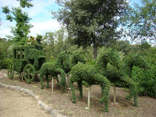 El bosque encantado San Martin de Valdeiglesias