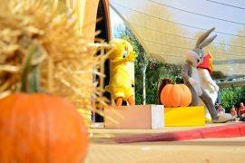 Parque Warner Halloween 2014 Niños