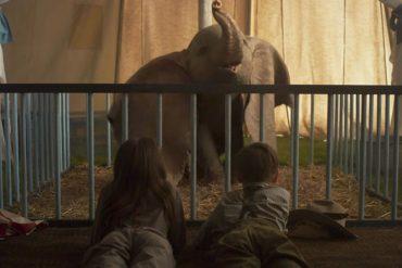 Dumbo niños
